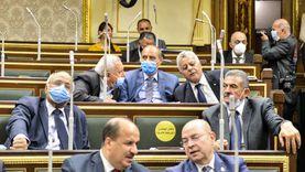 """طاقة البرلمان: مصر أنشأت محطة كهرباء """"غياضة"""" في وقت قياسي"""
