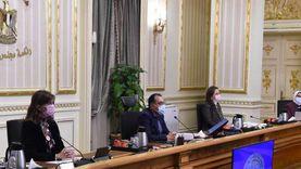 مجلس الوزراء: لا عجز في محطات الوقود.. تعمل بكامل طاقتها
