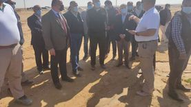 وزير الزراعة: طماطم صحراوي المنيا أفضل من مثيلتها في أوربا