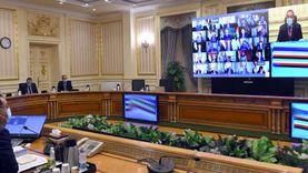 """""""الوزراء"""" يوافق على الخطة التنفيذية لتصنيع وتجميع مشتقات البلازما"""