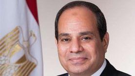 مشايخ القبائل الليبية يفوضون السيسي للتدخل لحماية السيادة الليبية