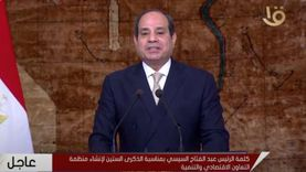 اقتصادي: النمو في مصر تزايد 12 ضعفا خلال 10 سنوات