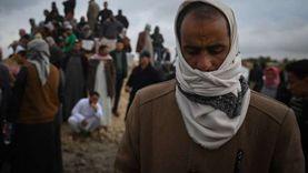 القصة الكاملة لكارثة غرق مركب بحيرة مريوط بعد رحلة «زردة شاي»