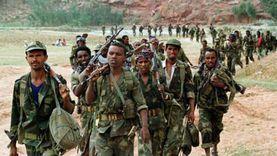 عاجل.. «رويترز»: جماعة مسلحة تسيطر على مدينة قرب السد الإثيوبي