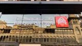 بنك القاهرة يبتكر في دعم المجتمع ويرفع شعار «التوافق مع الاستدامة»