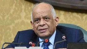 مجلس النواب يصوت على حفظ طلب رفع الحصانة لعضوين
