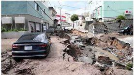 «مركز البحوث الفلكية» يكشف حقيقة تنبؤ الحيوانات بحدوث الزلازل