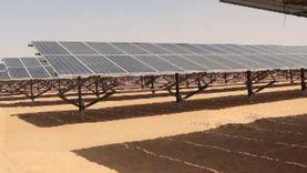 الكهرباء تنفي تحديد قيمة تكلفة دمج الطاقة الشمسية في الشبكة القومية