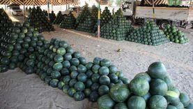«الزراعة»: فساد البطيخ والخوخ سببه «الحر».. ومصطلح «مسمم» متجاوز جدا