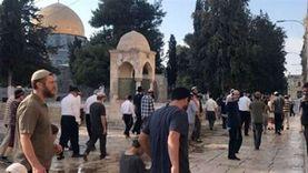 290 مستوطنا يقتحمون المسجد الأقصى بحماية شرطة الاحتلال الإسرائيلي