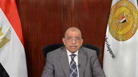 «التنمية المحلية» تصدر قرارا بشأن تنظيم انتظار المركبات في الشوارع