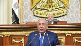 وزير الخارجية: مصر تواصل مساعيها لدعم الشعب الفلسطيني الشقيق