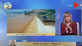 محلل سياسي: هناك تنسيق كامل بين مصر والسودان يحدث لأول مرة