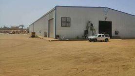 تموين الغربية: توريد 111 ألف طن قمح للشون والصوامع