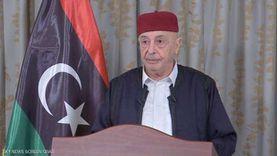 أعيان ومشايخ ليبيا: ما صدر عن مجلس النواب استجابة لرغبة الشعب الليبي