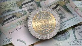 الدعم الحكومي الريفي للعاطلين.. شروط وآلية التسجيل في السعودية