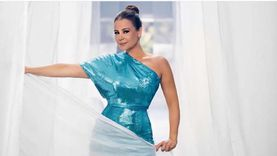 """كارول سماحة تشكر أحمد عز على دعمه لبنان أثناء عرض """"علاء الدين"""""""