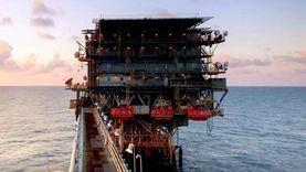 """""""البترول"""": اكتشافات الغاز تصب في صالح المواطن والدولة"""