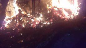 أنقد كلبا وقطة.. ضابط حماية مدنية يقتحم شقة اندلعت بها النيران