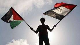 مطالبات ومساعدة ورسائل استنكار.. كيف دعمت مصر فلسطين ضد الاحتلال؟