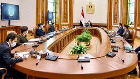 عاجل.. السيسي يوجّه بتوفير عوامل النجاح للمشروع القومي «مستقبل مصر»