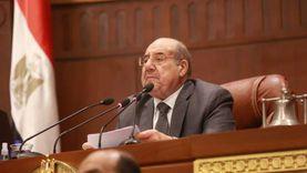 رئيس «الشيوخ»: الأداء التشريعي الأول للمجلس مبشر
