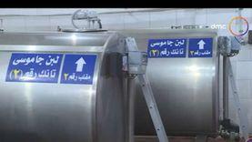 """منسق مراكز تجميع الألبان بـ""""الزراعة"""":نصدر منتجات الألبان إلى 45 دولة..ومصر في المركز السادس على مستوى أفريقيا"""