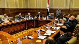 """""""أمين عام الشيوخ"""": هناك رأي دستوري يرى أن المجلس منوط بإصدار لائحته"""