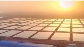 تعرف على مشروع الاستزراع السمكي بشرق بورسعيد: الأضخم في تاريخ مصر