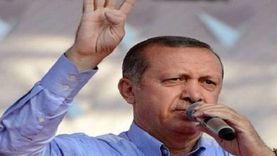 برلماني تركي يرد على حزب أردوغان: شعار رابعة إرث نازي