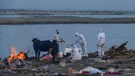الهند تؤكد صحة تقارير عن التخلص من جثث لضحايا كوفيد-19 في الأنهار