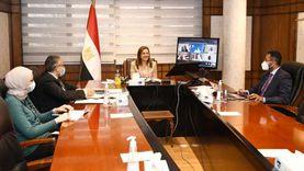 وزيرة التخطيط تجتمع بلجنة تحكيم جائزة مصر للتميز الحكومي «2020-2021»
