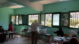 """لجان الدقي تستقبل الناخبين بكمامات ومعقمات للتصويت بـ""""الشيوخ"""""""