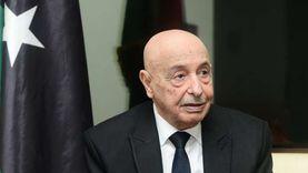 صالح: الاتفاق على توزيع المناصب السيادية بليبيا.. وسرت مقر السلطة