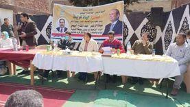 استمرار تنفيذ مشروعات «حياة كريمة» في قري محافظة المنوفية