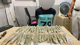 ضبط شخص بحوزته كمية من مخدر البانجو بقصد الاتجار في الساحل