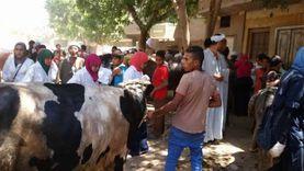 بدء تنفيذ الحملة القومية لتحصين الماشية ضد الحمى القلاعية في أسيوط