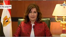 مكرم: أتمنى أن تكون المشاركة كبيرة في الانتخابات بالخارج