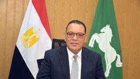 حزمة مشروعات تنموية وخدمية في ههيا بالشرقية بـ754 مليون جنيه