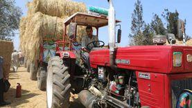 وزيرة البيئة: وفرنا 26 ألف فرصة عمل من تحويل قش الأرز لأعلاف حيوانية