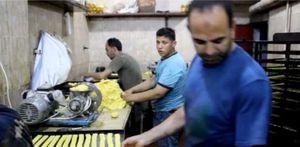 كعك العيد في الغربية حاجة تفرح: أزمة كورونا خلتنا نحطم الأسعار