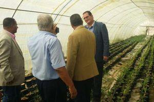 الزراعة تتابع رفع كفاءة أصولها بمحافظتي الإسماعيلية وسيناء