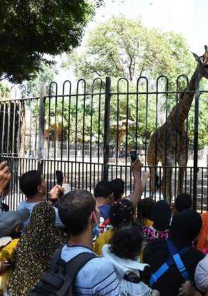 مواطنون يتنزهون في حديقة الحيوان ثالث أيام عيد الأضحى المبارك