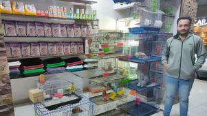 محل لبيع الحيوانات الأليفة بالمنيا