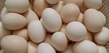 بيض مائدة