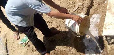 حملة للقضاء على مستعمرات النمل الأبيض بالمنازل في الفيوم