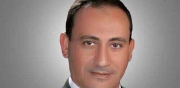 النائب محمد زين الدين