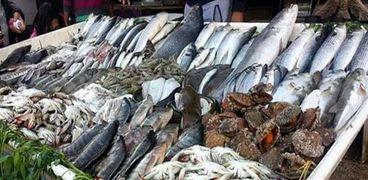 أسعار الأسماك اليوم في سوق العبور