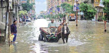 مواطنون من الإسكندرية وسط أحد الشوارع الغارقة