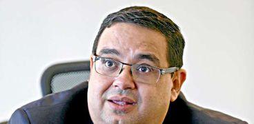 محسن عادل، الخبير الاقتصادي